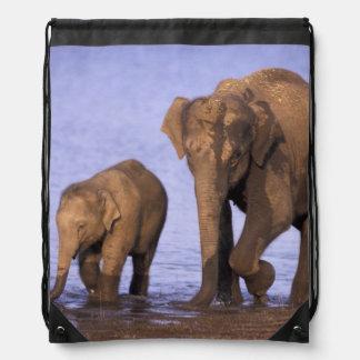 India Nagarhole National Park Asian elephant Backpack