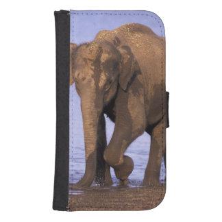 India, Nagarhole National Park. Asian elephant Samsung S4 Wallet Case