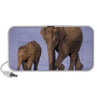 India Nagarhole National Park Asian elephant Notebook Speakers