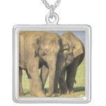 India, Nagarhole National Park. Asian elephant Square Pendant Necklace