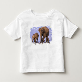 India, Nagarhole National Park. Asian elephant Toddler T-Shirt