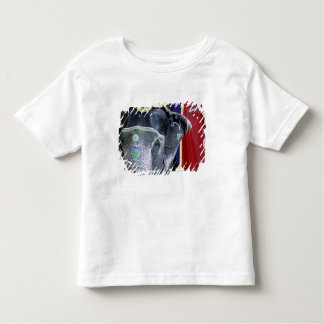 India, Rajasthan, Jaipur. Amber Fort. Toddler T-Shirt