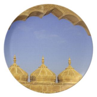 India, Rajasthan, Jaisalmer. Sandstone domes Plate