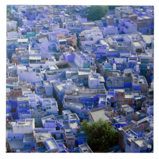 INDIA, Rajasthan, Jodhpur: Blue City of Jodhpur Large Square Tile