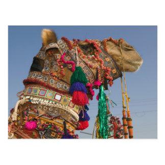 INDIA, Rajasthan, Pushkar: PUSHKAR CAMEL FAIR, Postcard