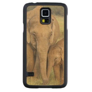 Indian / Asian Elephant and young one,Corbett Carved Maple Galaxy S5 Case