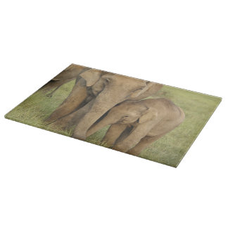 Indian / Asian Elephant and young one,Corbett Cutting Board