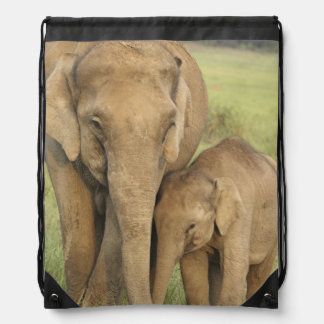 Indian / Asian Elephant and young one,Corbett Drawstring Bag