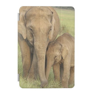 Indian / Asian Elephant and young one,Corbett iPad Mini Cover