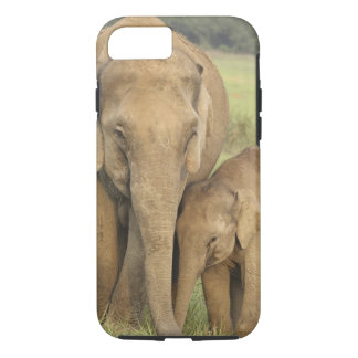 Indian / Asian Elephant and young one,Corbett iPhone 8/7 Case