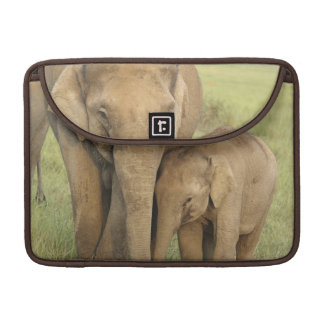Indian / Asian Elephant and young one,Corbett Sleeve For MacBooks