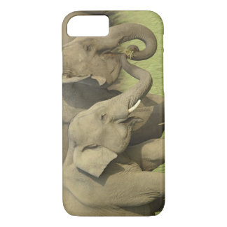 Indian / Asian Elephant asking for food;Corbett iPhone 8/7 Case