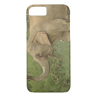 Indian / Asian Elephant communicating,Corbett 2 iPhone 7 Case