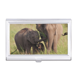 Indian Asian Elephant family in the savannah Business Card Holder