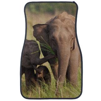 Indian Asian Elephant family in the savannah Car Mat