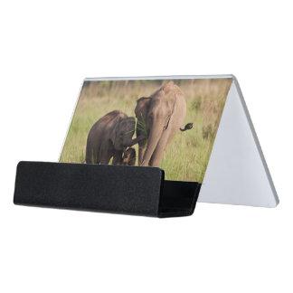 Indian Asian Elephant family in the savannah Desk Business Card Holder