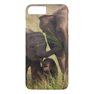 Indian Asian Elephant family in the savannah iPhone 8 Plus/7 Plus Case