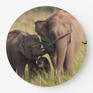 Indian Asian Elephant family in the savannah Large Clock