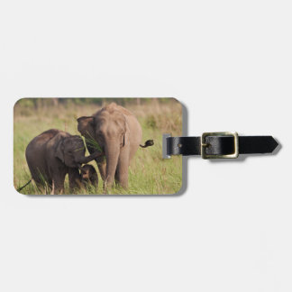 Indian Asian Elephant family in the savannah Luggage Tag