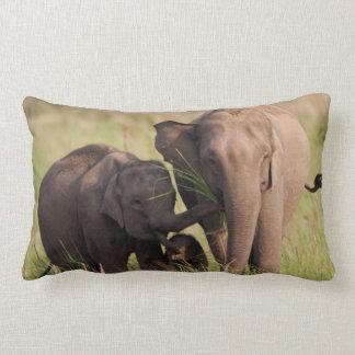 Indian Asian Elephant family in the savannah Lumbar Cushion