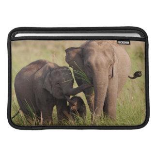 Indian Asian Elephant family in the savannah MacBook Sleeve