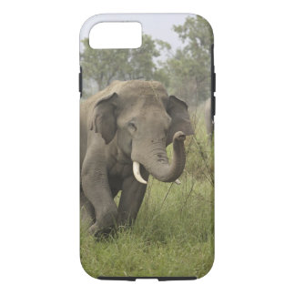 Indian / Asian Elephant greeting,Corbett iPhone 8/7 Case
