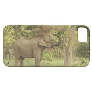 Indian / Asian Elephant taking dust bath,Corbett iPhone 5 Covers