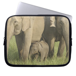 Indian / Asian Elephants and young one,Corbett Laptop Sleeve
