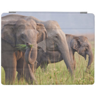 Indian Asian Elephants displaying grass iPad Cover