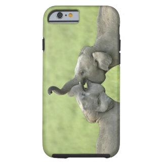 Indian / Asian Elephants play fighting;Corbett Tough iPhone 6 Case
