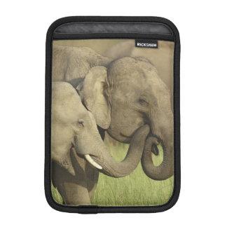 Indian / Asian Elephants sharing a Sleeve For iPad Mini