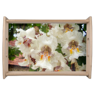 Indian Bean Tree Flowers Serving Tray