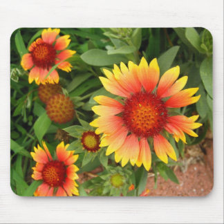Indian Blanket Mouse Pad