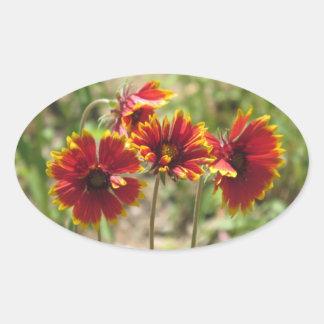 Indian Blanket Wildflowers Oval Sticker