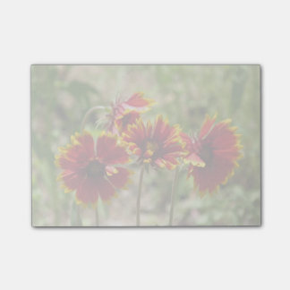 Indian Blanket Wildflowers Post-it® Notes