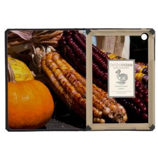 Indian Corn and Pumpkin iPad Mini Retina Covers