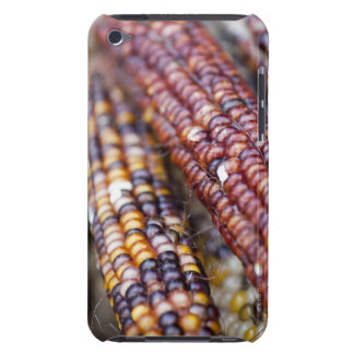 Indian Corn at the Union Square Greenmarket, New Y iPod Touch Case
