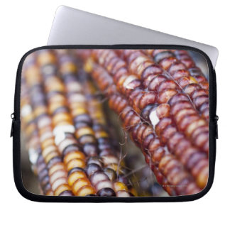 Indian Corn at the Union Square Greenmarket, New Y Laptop Sleeve
