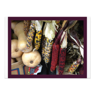 Indian Corn Autumn Harvest Announcement