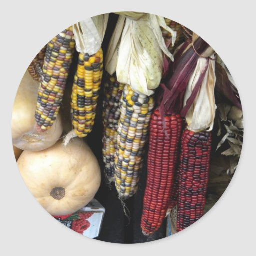 Indian Corn Autumn Harvest Sticker