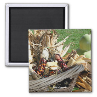 Indian Corn Basket Nature Photography Magnet