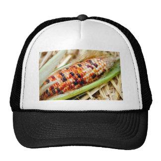 Indian Corn Trucker Hat