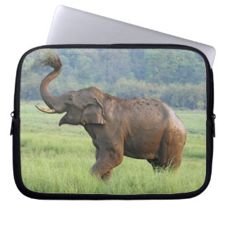 Indian Elephant dust bathing,Corbett National Laptop Sleeve