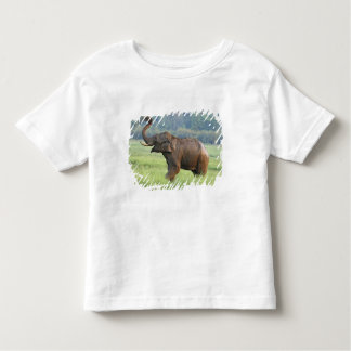 Indian Elephant dust bathing,Corbett National Toddler T-Shirt