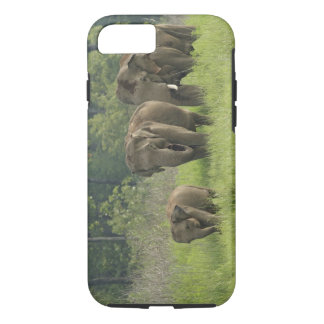 Indian Elephant family coming out of iPhone 8/7 Case