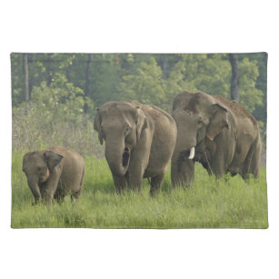 Elephant Placemats Zazzle Co Uk