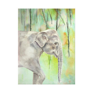 Indian Elephant fine art Stretched Canvas Prints
