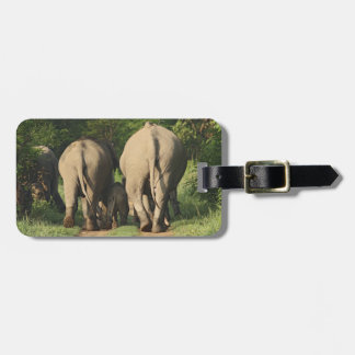Indian Elephants on the jungle track,Corbett Bag Tag