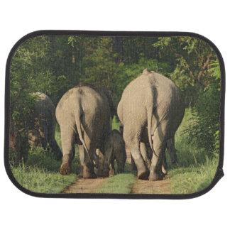 Indian Elephants on the jungle track,Corbett Car Mat