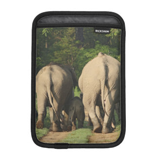 Indian Elephants on the jungle track,Corbett iPad Mini Sleeve
